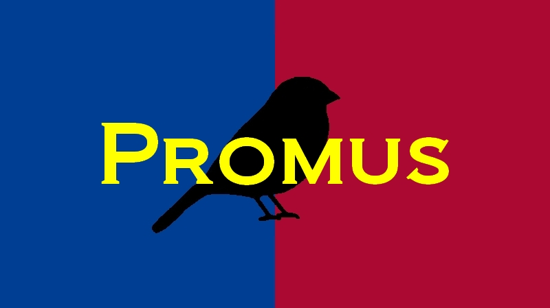 Promus Webdesign